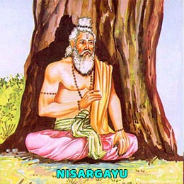What is Nisargayu (निसर्गायु)?