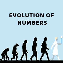 Evolution of Numbers
