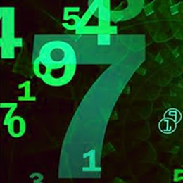 Numerology Career and Business