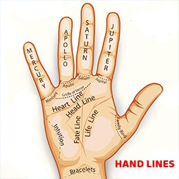 HAND LINES ARE SUBJECT TO CHANGE
