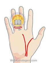 Hand Image