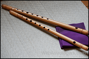 Bamboo and Flutes